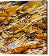 Fast Flowing Canvas Print