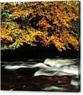 Fast Flowing Water And Fall Colours Canvas Print