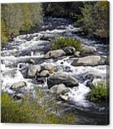 Feather River White Water Canvas Print