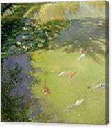 Featherplay Canvas Print