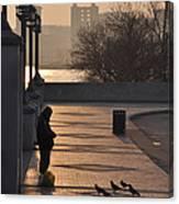Feeding The Pigeons At Dawn Canvas Print