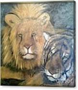 Felini Canvas Print