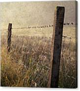 Fence And Field. Trossachs National Park. Scotland Canvas Print