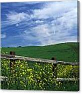 Fence And Flowers Canvas Print