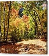 Fenced Path Through Autumn Forest - Blacksmith Fork Canyon - Utah Canvas Print