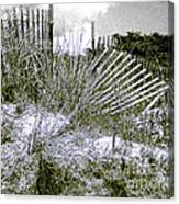 Fences In Duotone Canvas Print