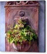 Fern In Antique Wall Planter Canvas Print
