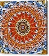 Fiber Eye Canvas Print