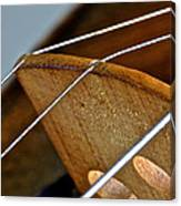 Fiddle Strings Canvas Print