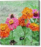 Field Of Flowers Impressionism Canvas Print