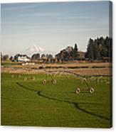 Field With Irrigation Pipes Canvas Print