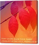 Fiery Colors Canvas Print