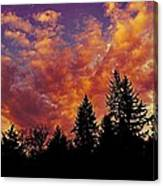 Fiery Evening Canvas Print