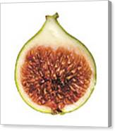 Fig Cut Open Isolated Canvas Print