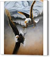 Fight In Flight Canvas Print