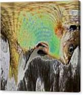 Fillet Of Fish Canvas Print