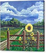 Finch Farm Canvas Print