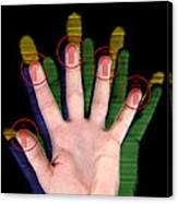 Fingerprint Biometrics Canvas Print