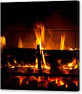 Fire Visions Canvas Print
