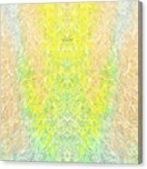 Firefly Macro2 Canvas Print