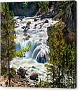 Firehole River Falls Canvas Print
