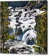 Firehole River IIi Canvas Print