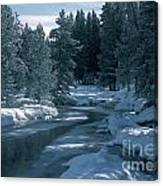 Firehole River In Yellowstone Canvas Print