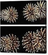 Firework Lifecycle 1 Canvas Print