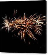 Firework Tails Canvas Print