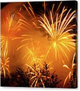 Fireworks Finale Canvas Print