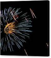 Fireworks Fun 1 Canvas Print