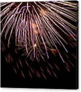 Fireworks Fun 14 Canvas Print