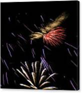 Fireworks Fun 2 Canvas Print