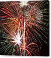 Fireworks Light Up The Night Canvas Print