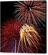 Fireworks Wixom 3 Canvas Print