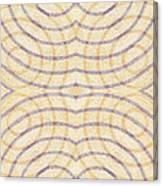Firmamentals 0-1 Canvas Print