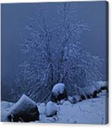 First Light First Snow II Canvas Print