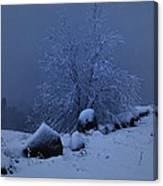 First Snow At First Light Canvas Print