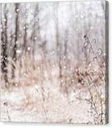 First Snow. Winter Mood Canvas Print
