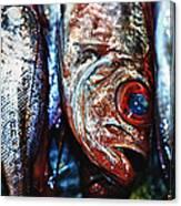 Fresh Fish At The Market Canvas Print