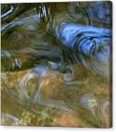 Fish In Rippling Water Canvas Print