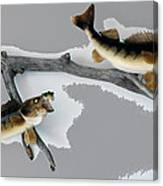 Fish Mount Set 03 C Canvas Print