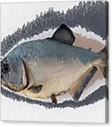 Fish Mount Set 04 C Canvas Print