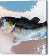 Fish Mount Set 07 B Canvas Print