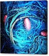 Fish Robe Net   Canvas Print