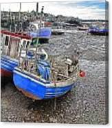 Fishing Fleet - Paddy's Hole Canvas Print
