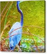 Fishing In The Reeds Canvas Print