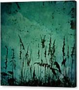Five Crows Canvas Print