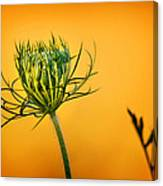 Fixn' To Bloom Canvas Print