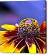 Flakes Of Pollen Canvas Print